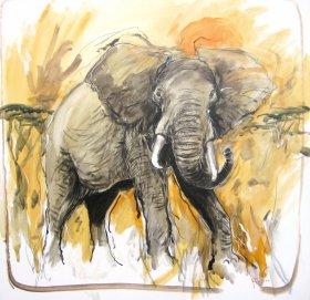 Afrikanischer Elefant Original 1742  Acryl auf Leinwand  80 x 80 cm